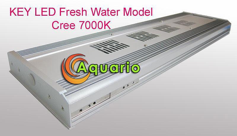 KEY K3 LED Freshwater AKCE! LED light
